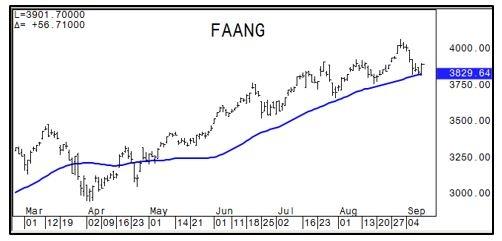 FAANG Chart